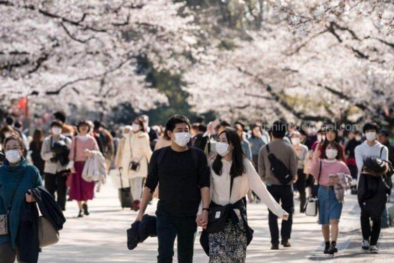 ญี่ปุ่น เริ่มต้นรณรงค์การท่องเที่ยวภายในประเทศ